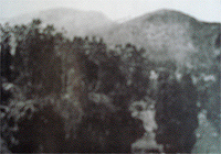 Bombay House and ELK Hill 1905